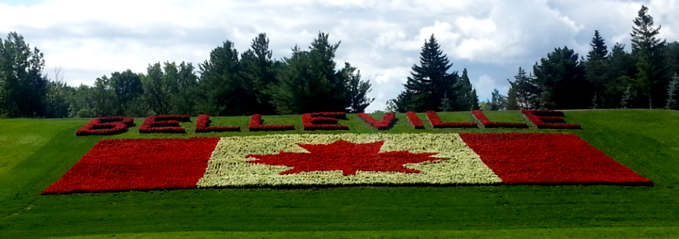 Photo of floral Canadian flag