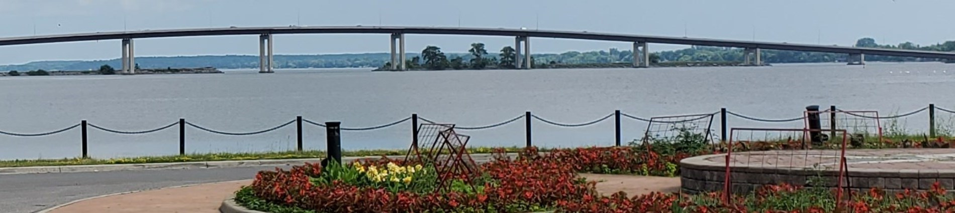 image of floral arrangement and Bay Bridge